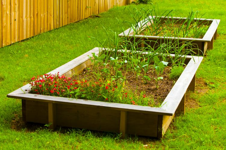 Raised Beds Grow In Popularity Farm Flavor