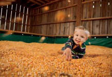 Alabama Agritourism, Tate Farms, Meridianville
