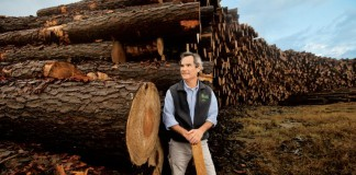 Alabama's forestry industry is among the state's top agriculture commodities