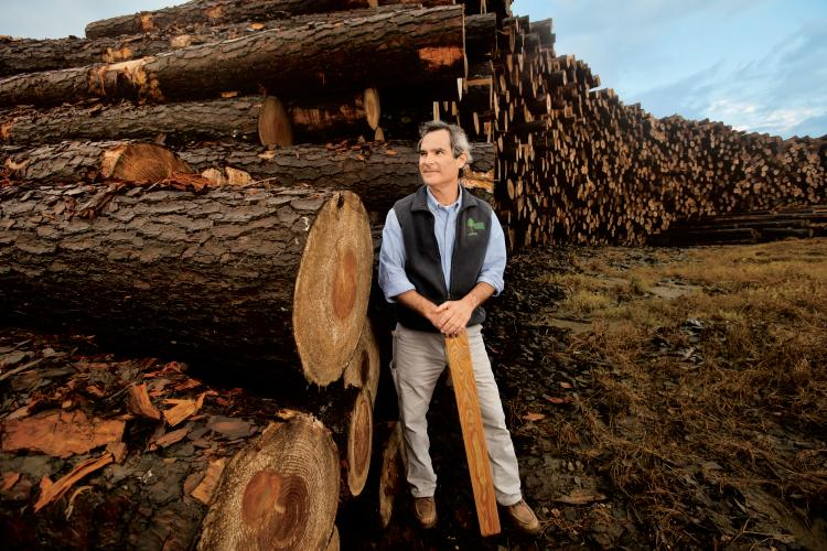 Export Markets Stimulate Alabama S Forestry Industry