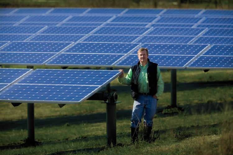 Solar Panels Pop Up On Tennessee Farms Farm Flavor