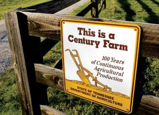 Farmland Legacy project helps keep Tennessee farms in business