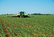 Facts and statistics about Illinois Agriculture