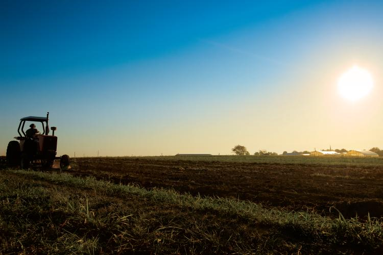 The Business of Agriculture in Kentucky