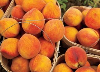 Alabama peaches