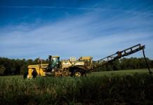 Virginia row crops