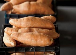 Arkansas Sweet Potatoes