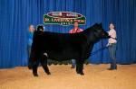 F10 Secondary: Livestock shows throughout Georgia