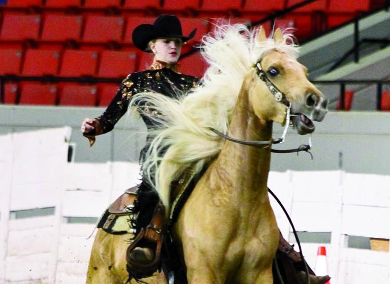 F5- North American Livestock Expo