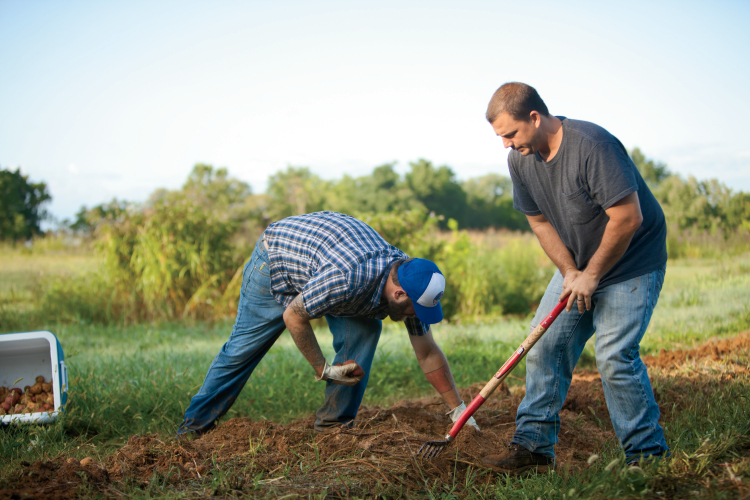 Veterans in Agriculture