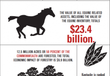Kentucky Agriculture Infographic
