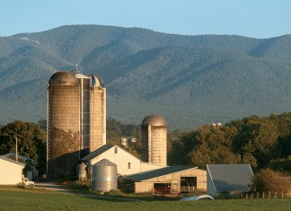 Virginia Agriculture Leaders Obtaining Results