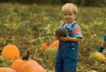 Child with pumpkin Direct Marketing in Virginia