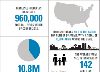 Tennessee Agriculture Infographic