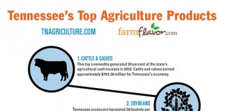 Top 10 Ag Commodities