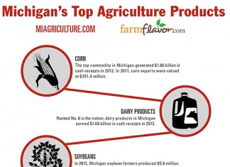 MI Ag Top 10 Infographic featured