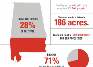 Alabama Agriculture Overview