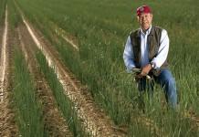 Reid Saito of KLG Farms