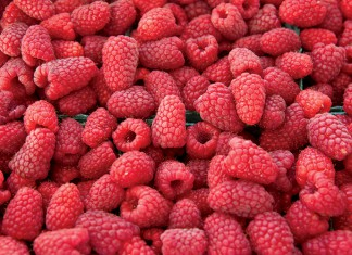 Raspberries at farmers market in Oregon