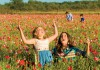 Guests enjoy a field of flowers at Wildseed Farms in Fredericksburg, Texas