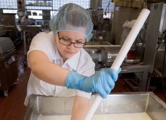 Researchers make cheese at the Center for Dairy Research at UW-Madison.