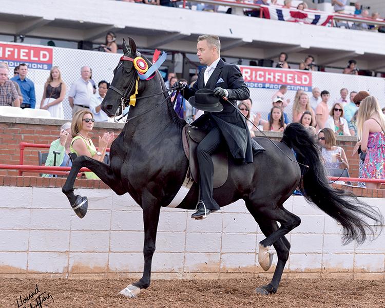 Junior League Horse