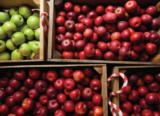 Apples from an orchard