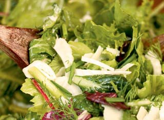 Mixed Green Salad with Fennel, Fresh Herbs, and Shaved Parmesan