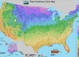 USDA gardening zone map