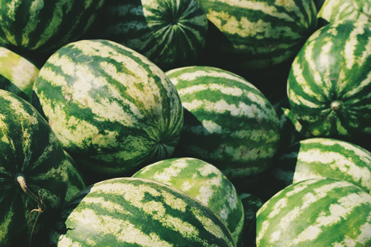 how to pick out a watermelon