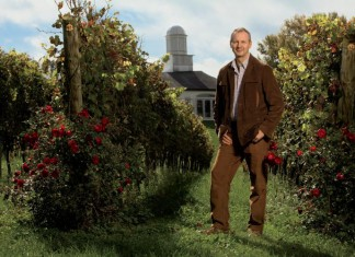 Virginia Wine Industry