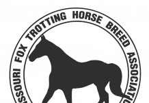 Missouri Fox Trotter Logo