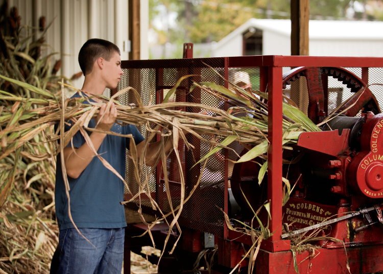 how to build a sorghum mill