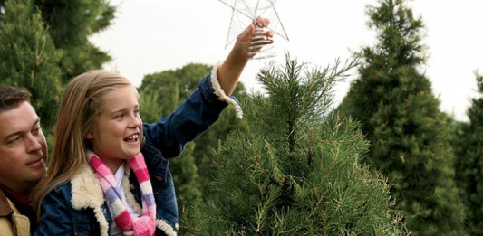 Christmas tree slider