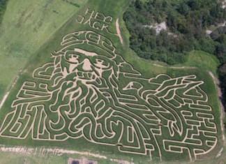 Duck Dynasty Corn Maze