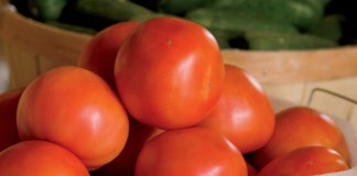 Tennessee Tomatoes