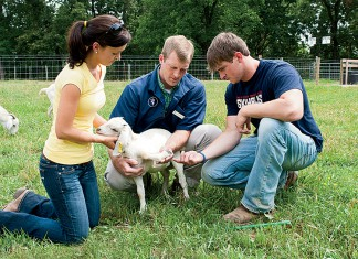 University of Tennessee Martin Ag students