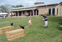 Tennessee Farms Cooperatives