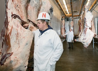 student Cory Peters checks the grade of meat at University of Nebraska Lincoln meat lab
