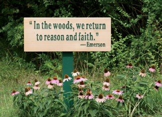 South Carolina Stewardship