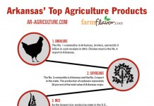 Arkansas Ag Infographic featured