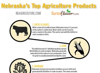 NE Ag infographic featured image