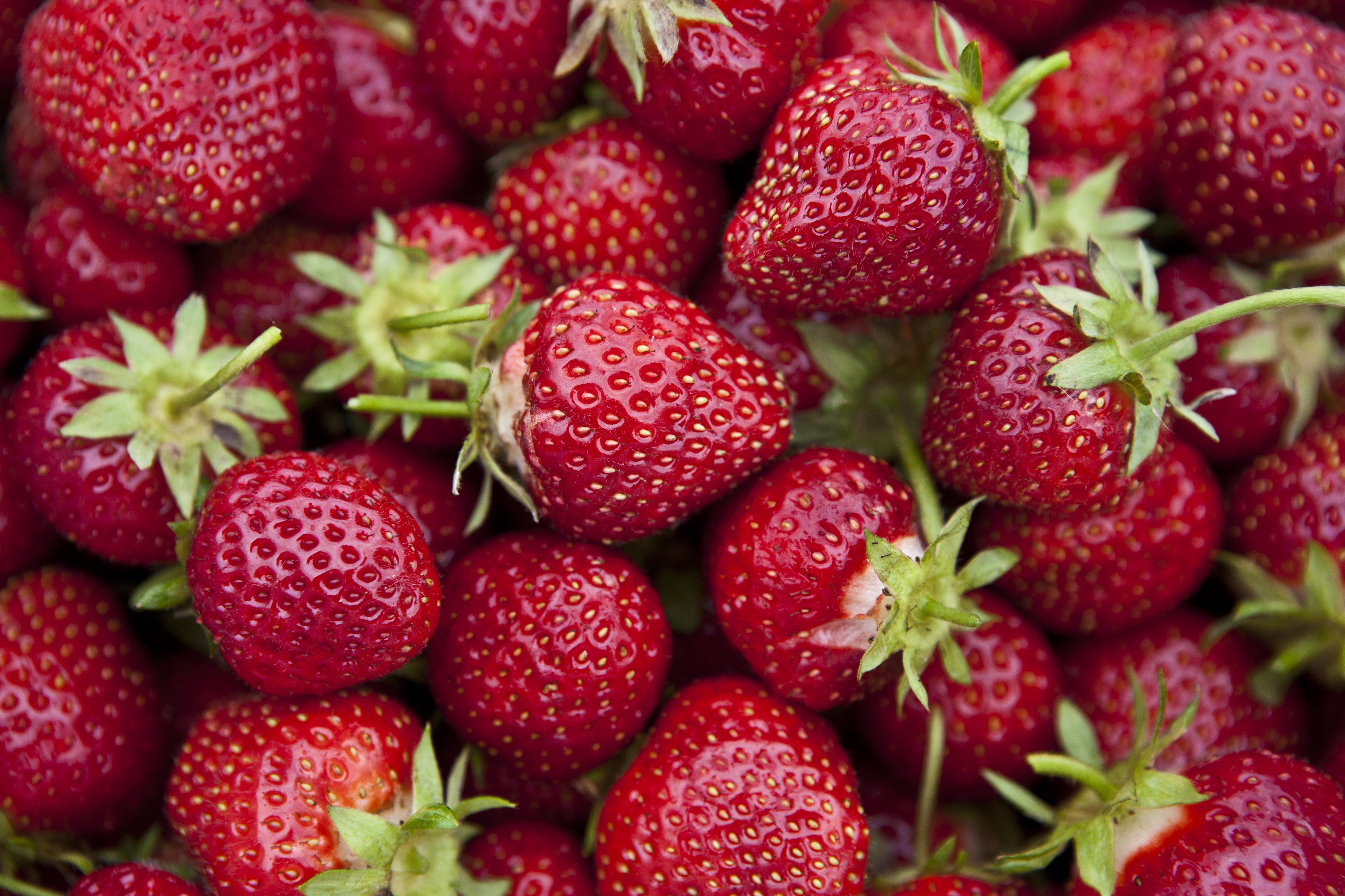 7 Crops Grown in California | Farm Flavor