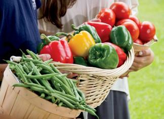 Florida farmers markets