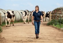 Stacy Eberle leads dairy cows from the barn to the milking parlor in Monroe, Wisconsin, Green County.