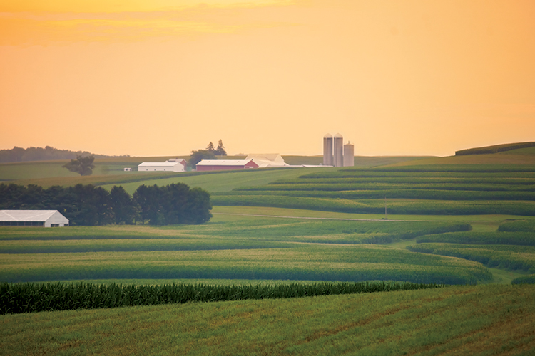 fun facts about u s  agriculture
