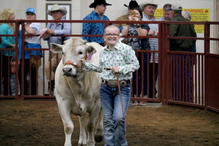 Osceola County Fair and Livestock Show