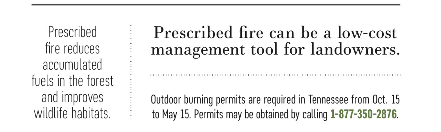 prescribed burns