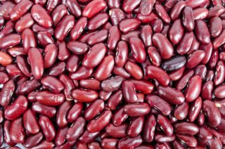 foods that grow in Wyoming, beans