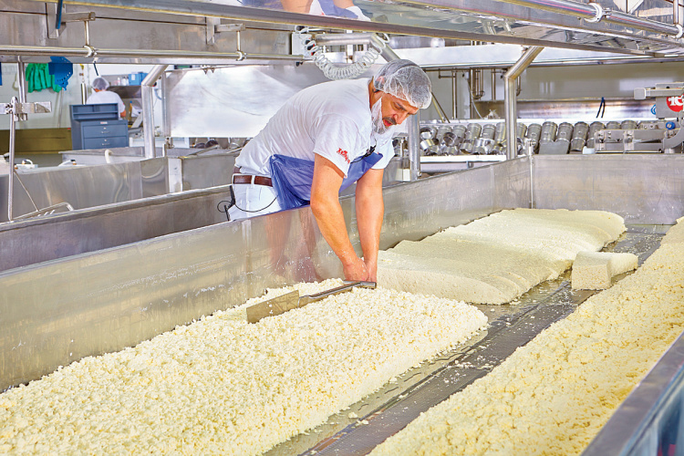 Wisconsin cheese production